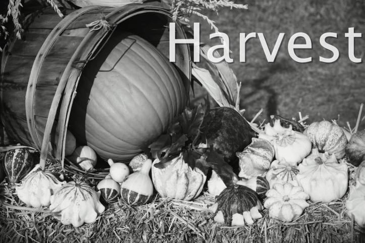 fall-harvest-14140189458Ag_Fotor